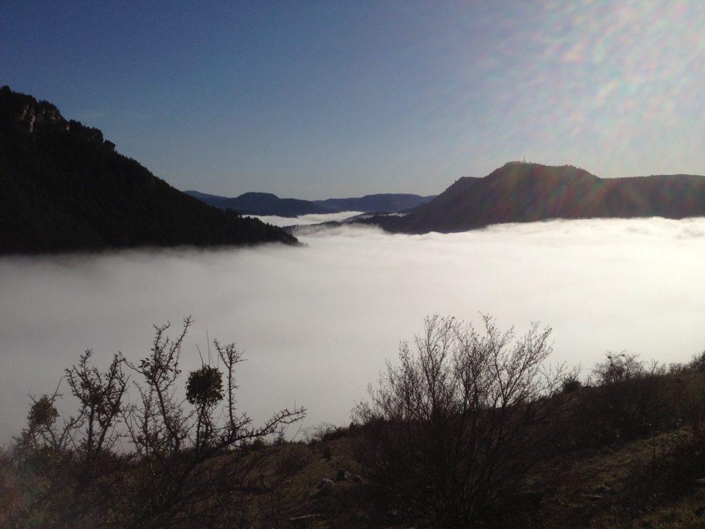 Les gorges du Tarn sous le brouillard