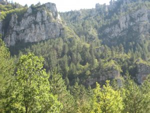 camping sainte enime gorges du tarn (14)